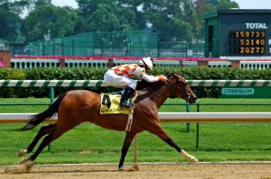 Kentucky Derby Longshot